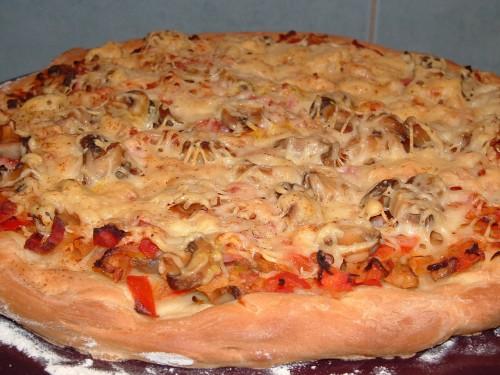 pizza, pizza stone emile henry, pâte à pizza thermomix, tomates, oignons, lardons, champignons, emmental