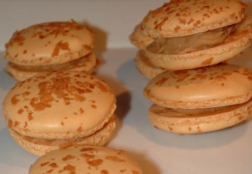 macarons, valrhona, praliné, gavotte, dulcey, valrhona