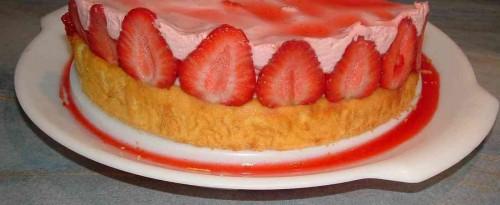 fraisier damien12.jpg