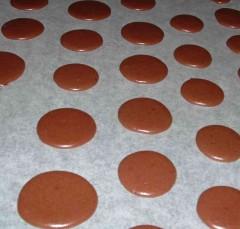 macaron pâte 3.jpg